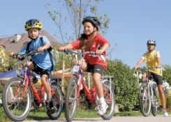 Austria: Danube Family Cycling Tour (7 Nights)