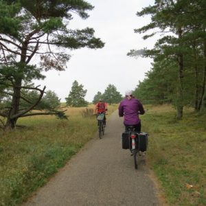 Cycling Holiday in Lithuania - Curonian Spit
