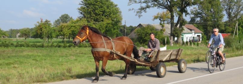 Cycling Holiday in Lithuania - Cyclist passing Horse