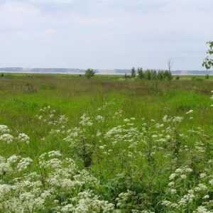 Cycling Holiday in Lithuania - Nemunas River Delta