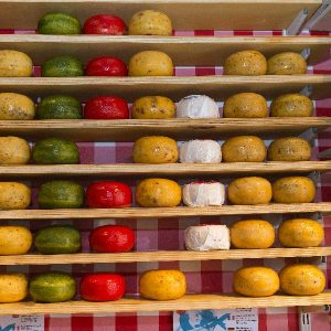Boat & Bike Tour of Northern Holland - Cheeses