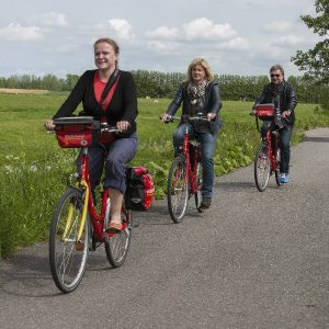Boat & Bike Tour of Northern Holland - Cycle Path