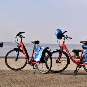 Boat & Bike Tour of Northern Holland - Hire Bikes (1)