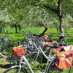 Self-Guided Cycling Tour from Vienna to Budapest - Ladies Hire Bike