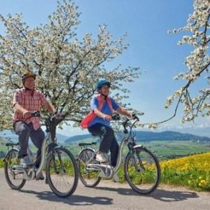 Self-Guided Cycling Tour from Vienna to Budapest - Unisex Hire Bikes