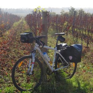 Cycling Tour of the Istrian Peninsula (3)