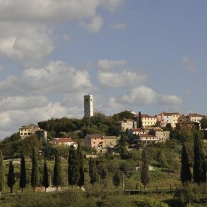 Cycling Tour of the Istrian Peninsula (8)